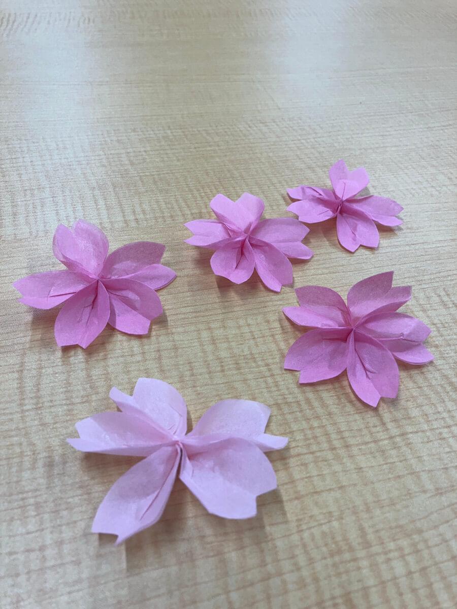 今年の桜満開は…..